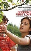 Elveda İlk Aşk Erotik Film izle
